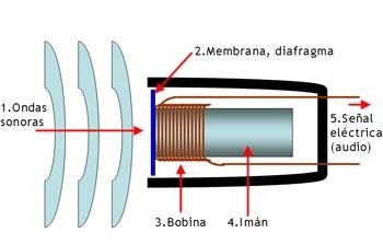 Esquema-funcionamiento-bobina-movil